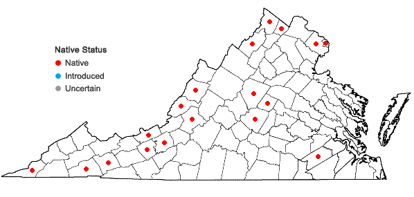 Locations ofPotamogeton illinoensis Morong in Virginia