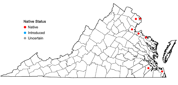 Locations ofPotamogeton perfoliatus L. in Virginia