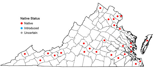Locations ofPotamogeton pusillus L. ssp. pusillus in Virginia