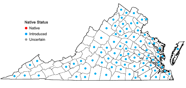 Locations ofPotentilla indica (Andr.) T. Wolf in Virginia
