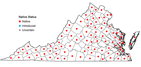Locations ofPotentilla simplex Michx. in Virginia