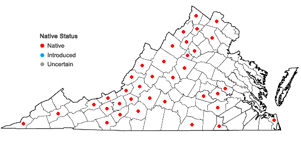 Locations ofPrenanthes alba L. in Virginia