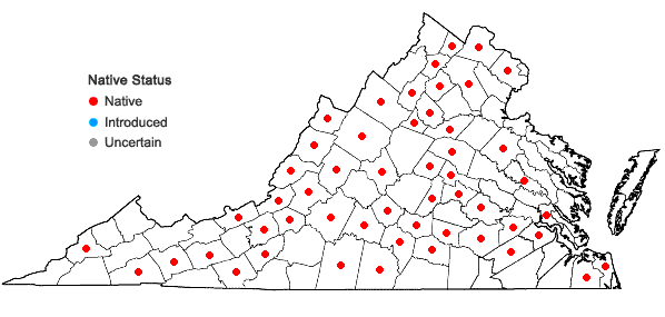 Locations ofPrenanthes trifoliolata (Cass.) Fern. in Virginia