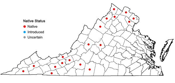 Locations ofPrimula meadia (L.) A. R. Mast & Reveal in Virginia