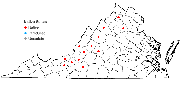 Locations ofPrunus alleghaniensis Porter var. alleghaniensis in Virginia