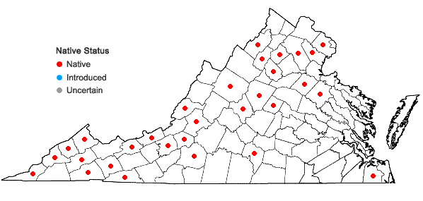 Locations ofPseudotaxiphyllum elegans (Brid.) Z. Iwats. in Virginia