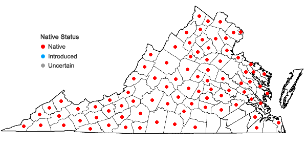 Locations ofPteridium aquilinum (L.) Kuhn ssp. latiusculum (Desv.) Hulten in Virginia