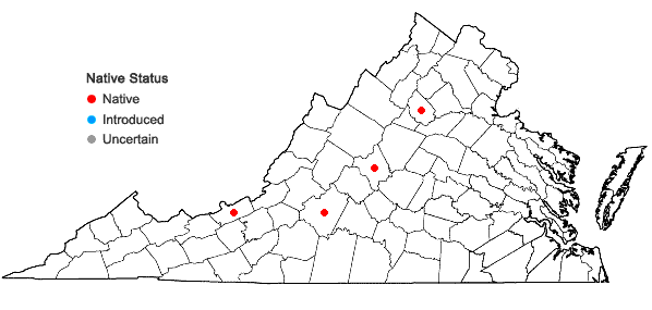 Locations ofPterigynandrum filiforme Hedwig in Virginia