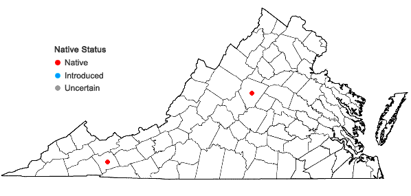 Locations ofPtilidium ciliare (L.) Hampe in Virginia
