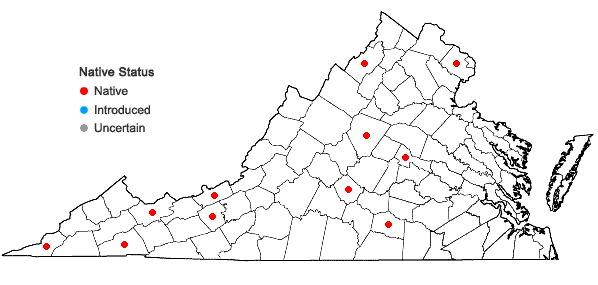 Locations ofPtychostomum creberrimum (Taylor) J.R. Spence & H.P. Ramsay in Virginia