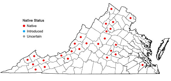 Locations ofPtychostomum pseudotriquetrum (Hedw.) J.R. Spence & H.P. Ramsay ex Holyoak & N. Pedersen in Virginia