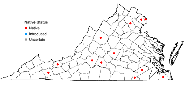 Locations ofPycnanthemum clinopodioides Torr. & Gray in Virginia