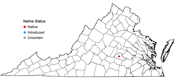 Locations ofPycnanthemum curvipes (Greene) Grant & Epling in Virginia