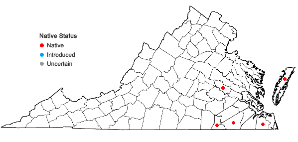 Locations ofPycnanthemum setosum Nutt. in Virginia