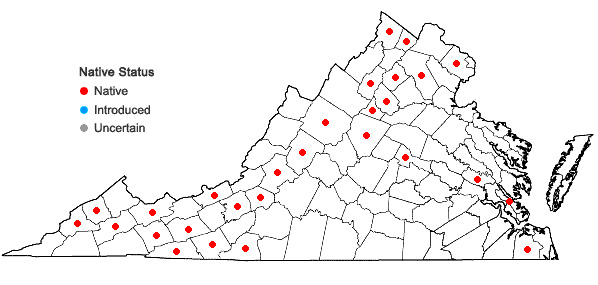 Locations ofPylaisiadelpha tenuirostris (Bruch & Schimp. ex Sull.) W.R. Buck in Virginia
