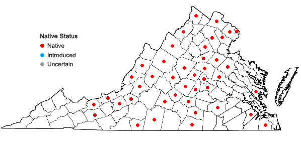 Locations ofQuercus bicolor Willdenow in Virginia