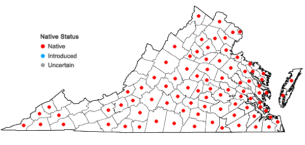 Locations ofQuercus falcata Michaux in Virginia