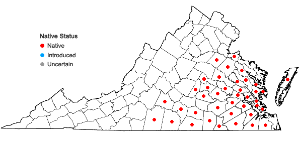 Locations ofQuercus lyrata Walter in Virginia
