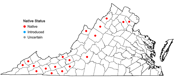 Locations ofQuercus rubra L. var. borealis (F. Michaux) Farwell in Virginia