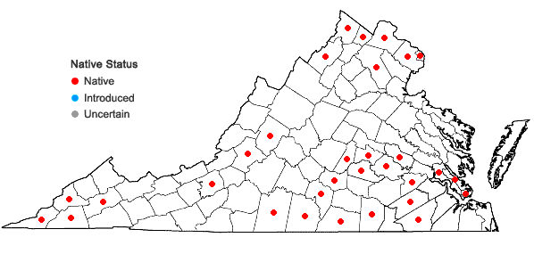 Locations ofQuercus shumardii Buckley in Virginia