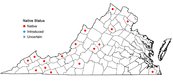 Locations ofRadula tenax Lindberg in Virginia
