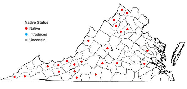 Locations ofRanunculus fascicularis Muhl. ex Bigelow in Virginia