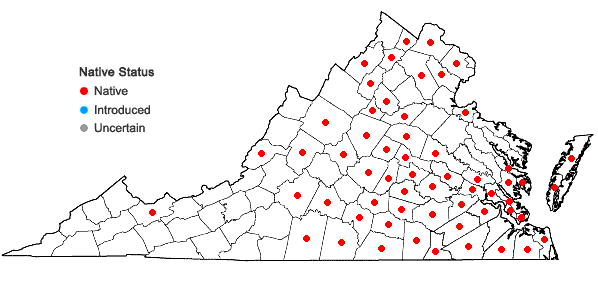 Locations ofRanunculus pusillus Poir. in Virginia