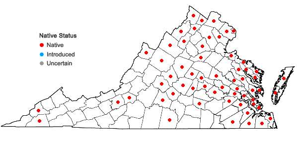 Locations ofRanunculus sceleratus L. var. sceleratus in Virginia