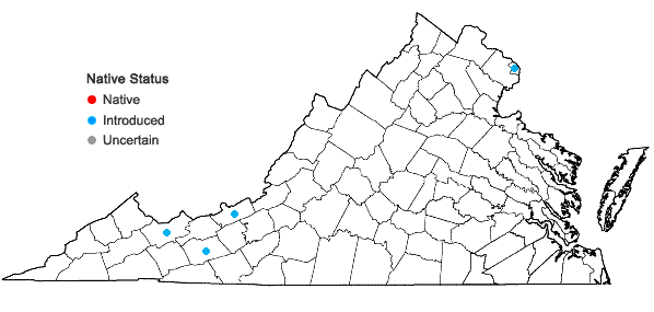 Locations ofRhamnus cathartica L. in Virginia