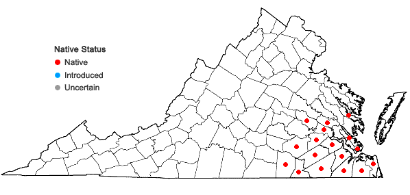Locations ofRhexia nashii Small in Virginia