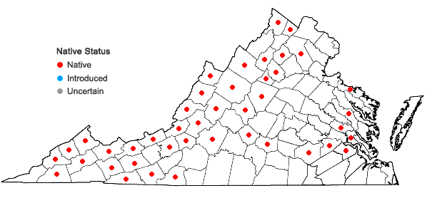 Locations ofRhodobryum ontariense (Kindb.) Kindb. in Virginia