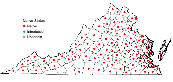 Locations ofRhus copallinum L. in Virginia