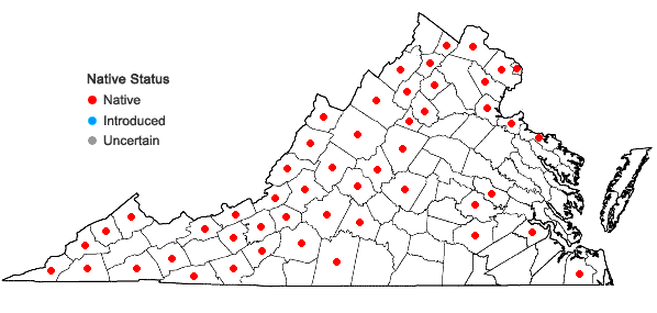 Locations ofRhus typhina L. in Virginia