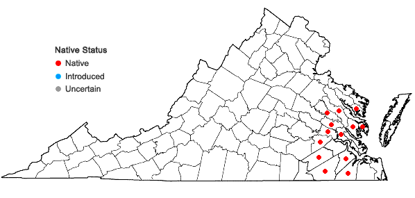 Locations ofRhynchosia difformis (Ell.) DC. in Virginia