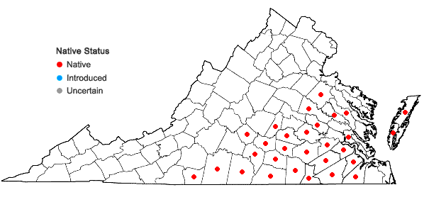 Locations ofRhynchosia tomentosa (L.) Hook. & Arnott in Virginia