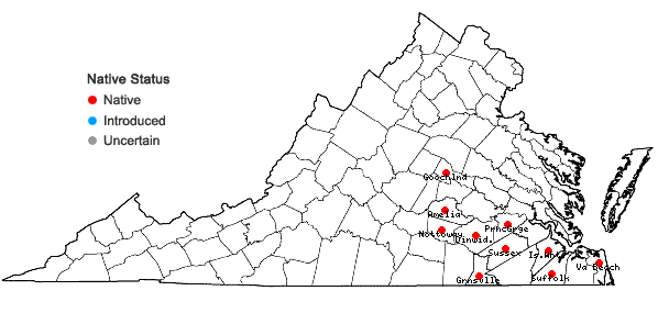 Locations ofRhynchospora rariflora (Michaux) Elliott in Virginia