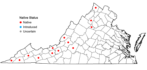 Locations ofRhytidium rugosum (Hedw.) Kindb. in Virginia
