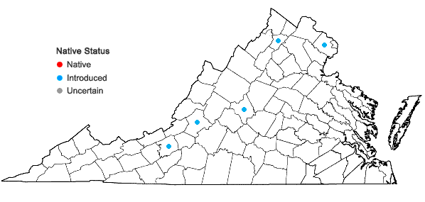 Locations ofRibes missouriense Nutt. in Virginia