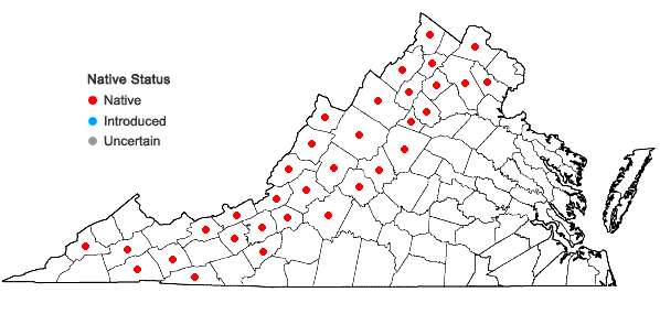 Locations ofRibes rotundifolium Michx. in Virginia