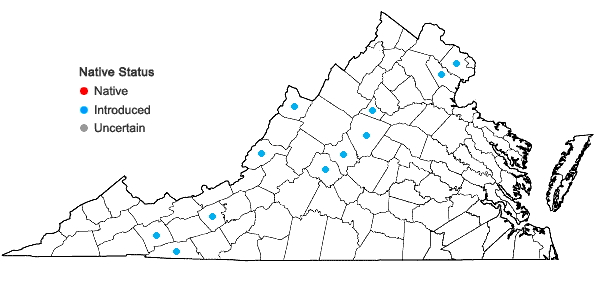Locations ofRibes rubrum L. in Virginia