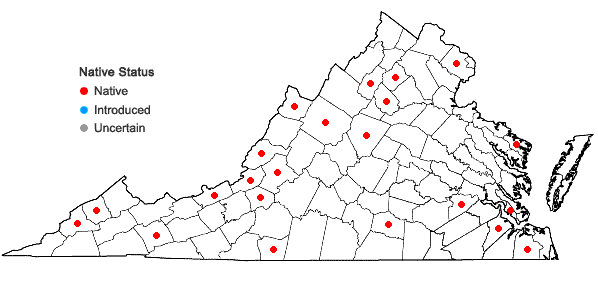 Locations ofRosulabryum capillare (Hedw.) J.R. Spence in Virginia