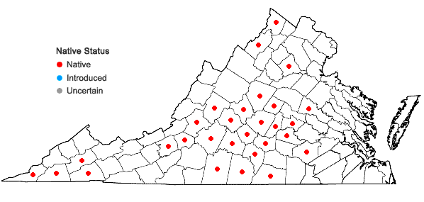 Locations ofRuellia purshiana Fernald in Virginia
