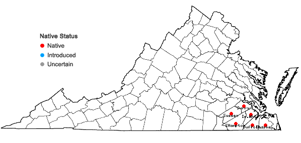 Locations ofSabatia calycina (Lam.) Heller in Virginia