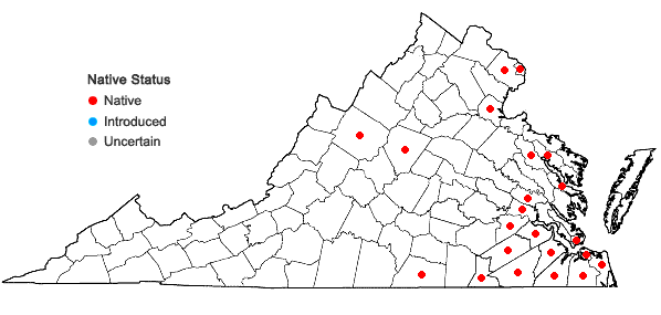 Locations ofSagittaria graminea Michaux in Virginia