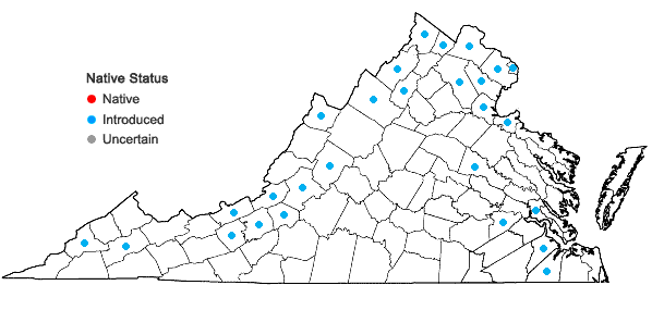 Locations ofSalix alba L. in Virginia