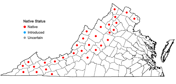 Locations ofSambucus racemosa L. var. pubens (Michx.) Koehne in Virginia