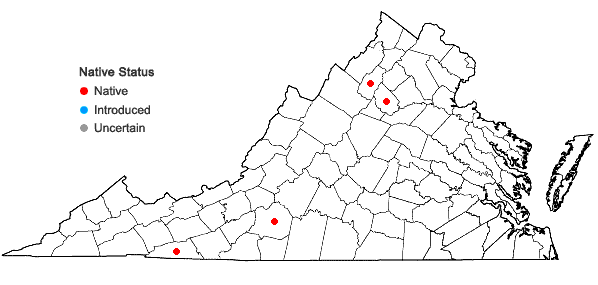 Locations ofSanguisorba canadensis L. in Virginia