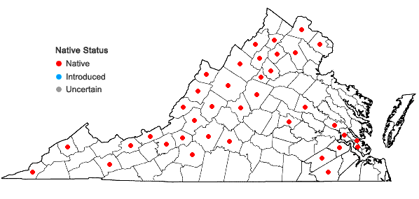 Locations ofSanicula marilandica L. in Virginia