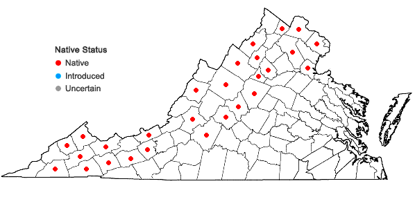 Locations ofSanicula trifoliata Bickn. in Virginia