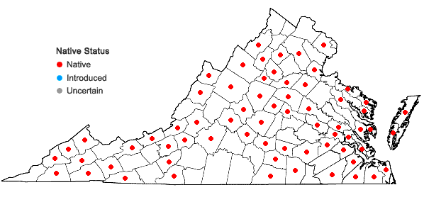 Locations ofScapania nemorea (L.) Grolle in Virginia